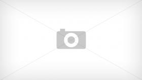 Регулятор для экскаватор гусеничный HITACHI ZX290-5 (9181609, 9198936, 9181608, 9198935)